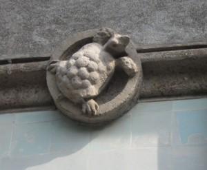tartaruga di cemento